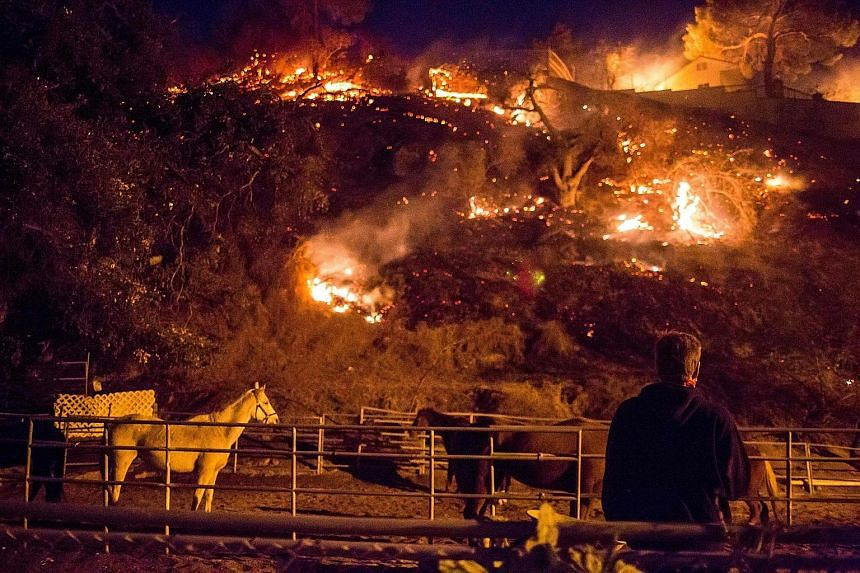 An unrelenting wildfire fanned by hot, dry winds threatened more than 12,000 homes in and around Ventura, California, yesterday, forcing thousands of people to race for safety. The fire, dubbed the Thomas Fire, raged in the foothills above and in the