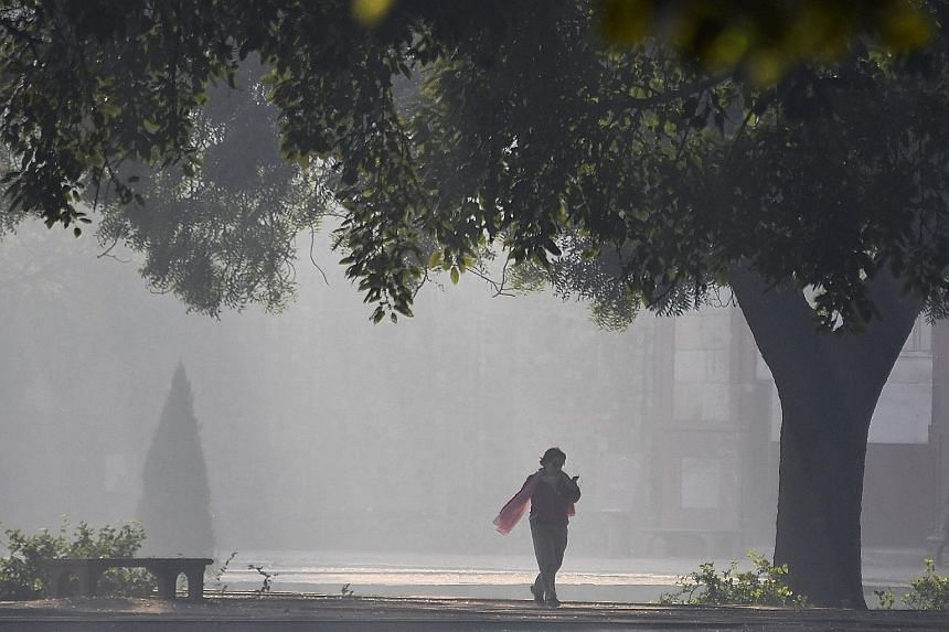 Heavy smog blanketing the garden of Humayun's Tomb in New Delhi yesterday. Asia accounts for more than 16 million of the world's 17 million infants aged under one year living in areas with severe pollution. India topped the list of countries with bab