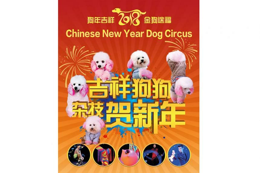 Chinese New Year Dog Circus was to be held during the upcoming Lunar New Year at Resorts World Sentosa.