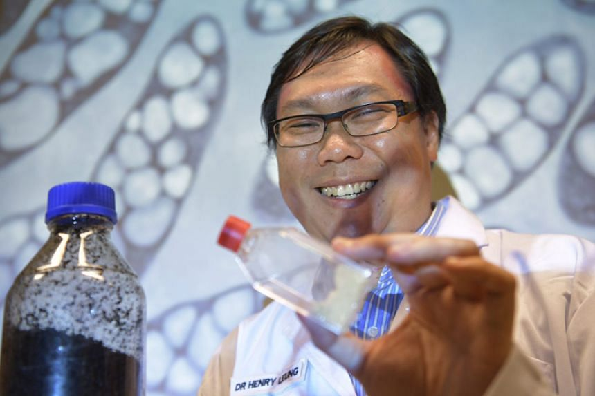 Nanyang Polytechnic scientist Henry Leung with a bottle of coffee waste and a bottle of polyhydroxyalkanoates. Dr Leung has found a way to use coffee waste to make biodegradable plastic.