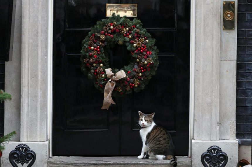 Larry the Downing Street cat sits on the doorstep to number 10, London on Dec 5, 2017.