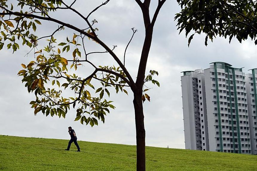 A man taking a short cut up a slope from the Park Connector Network to get to the main road at Sumang Walk in Punggol town.