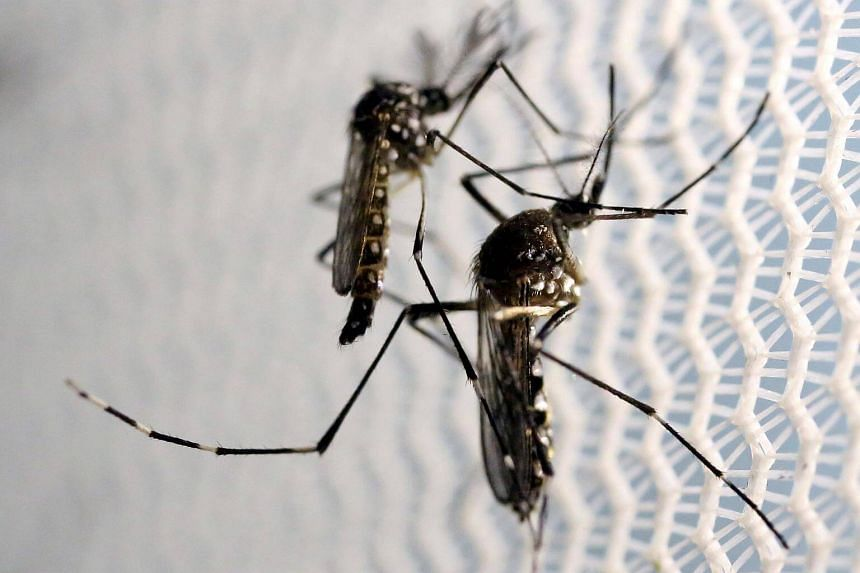 The Zika outbreak that swept through the Americas in 2015 and 2016 showed the virus could, in rare cases, cause Guillain-Barre.