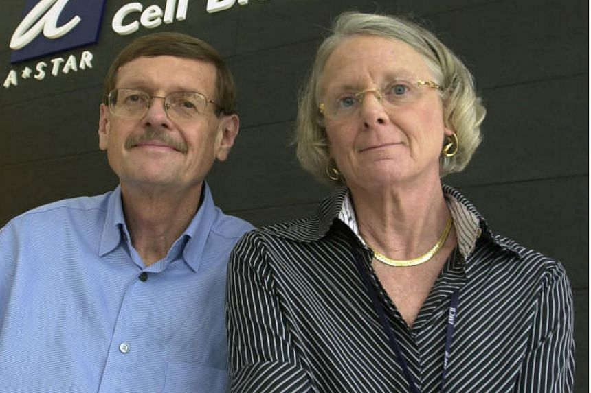 Renowned husband-and-wife team Neal Copeland and Nancy Jenkins left the Institute of Molecular and Cell Biology in 2011 to return to the United States.