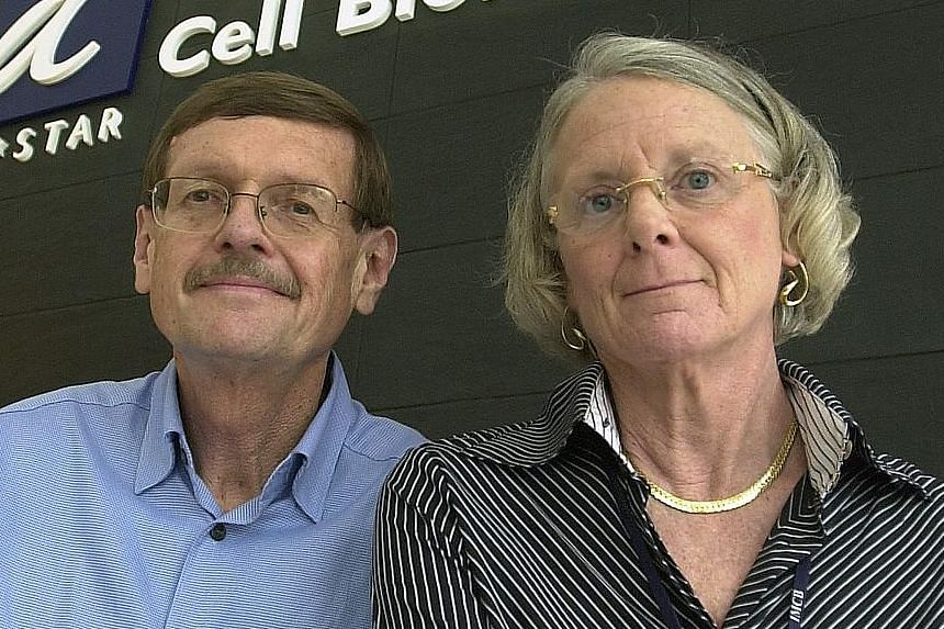 American husband-and-wife team Neal Copeland and Nancy Jenkins