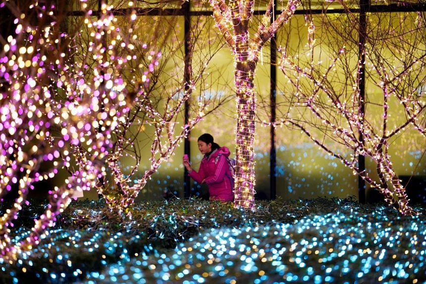 Trees wrapped up in lights outside a building in Beijing. Though Christmas is not a national holiday in China, the capital goes into a festive mood at this time.