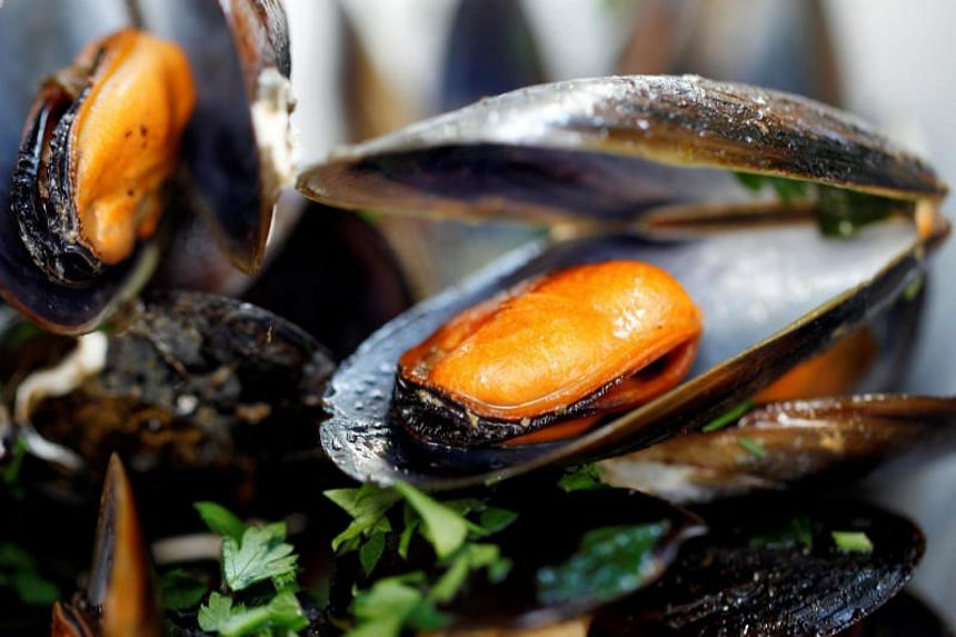 Microplastics have been found in mussels everywhere scientists have looked, according to a researcher from the Norwegian Institute for Water Research.