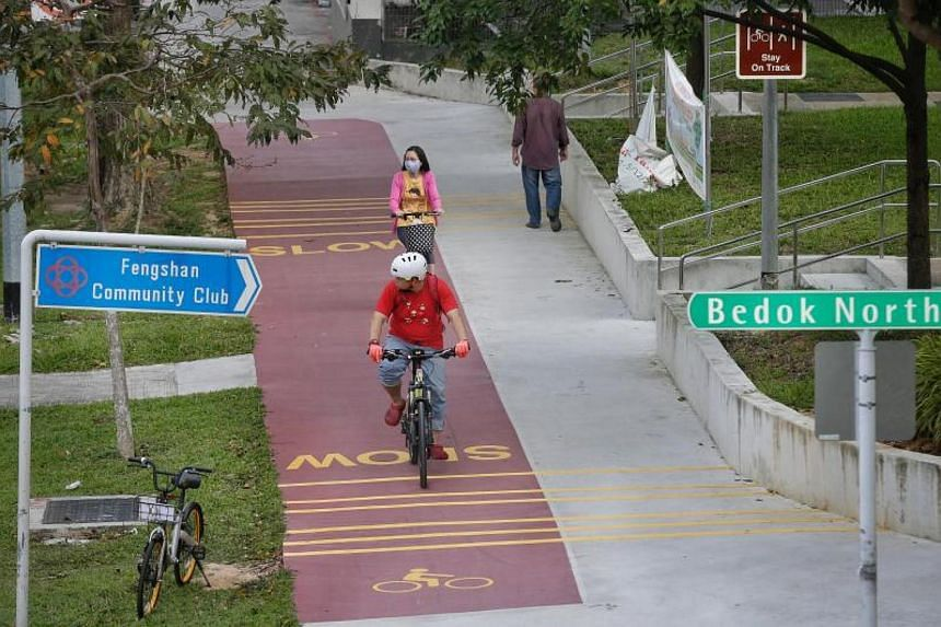 Cyclists on a red path along Bedok North Avenue 3 and near Bedok North Street 2 on Dec 21, 2017.
