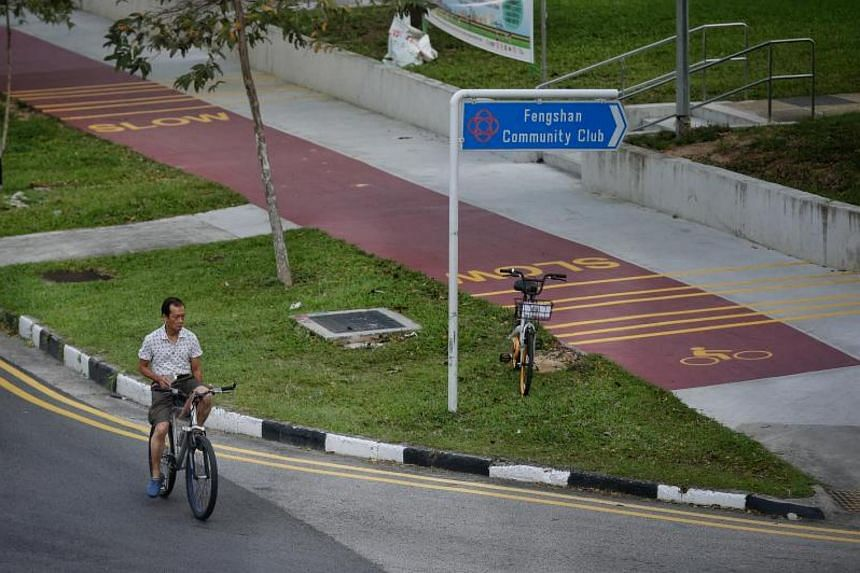 An errant cyclist cycles on the road instead of the red path along Bedok North Avenue 3 and near Bedok North Street 2 on Dec 21, 2017.
