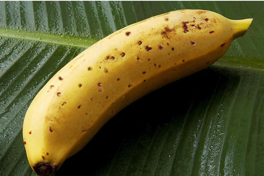 The Mongee banana from Japan, whose skin is also edible.