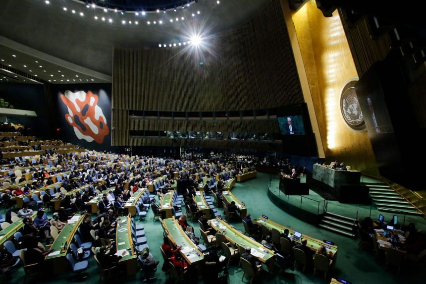Palestinian Foreign Minister Riyad al-Malki addresses the General Assembly prior to the vote.