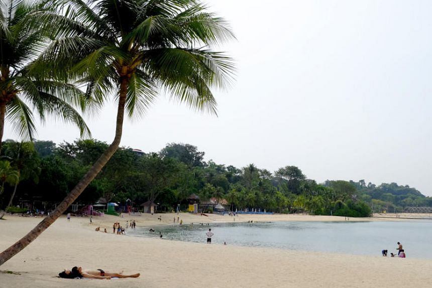 A 24-year-old suspect was arrested after two women reported that they were molested at Palawan Beach in Sentosa.