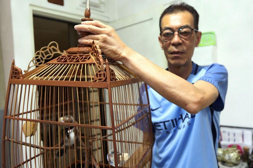 A black-crested bulbul said to be worth $600 was stolen from a flat in Bedok North.