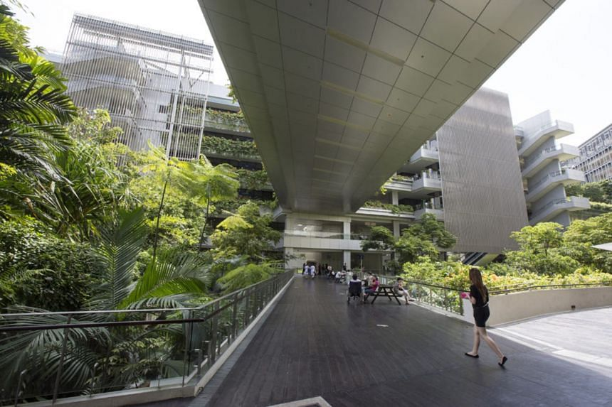 The rainforest-like landscaping at Khoo Teck Puat Hospital was highlighted for infusing the atmosphere with natural sights, sounds and scents.