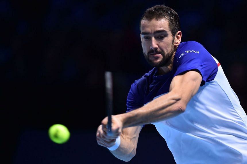 Cilic (above, in a file photo) enjoyed a straight-sets win over local wildcard Ramkumar Ramanathan.