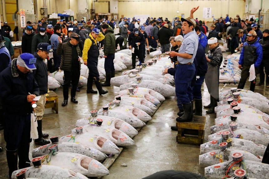 Auctioneers start the New Year's auction of frozen tuna at the Tsukiji fish market in Tokyo, Japan on Jan 5, 2018.