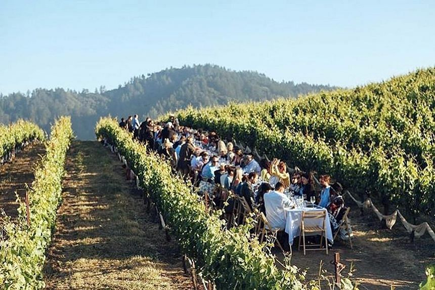 Napa Valley in California has more than just wineries, boasting a robust arts scene with several high-calibre art galleries.