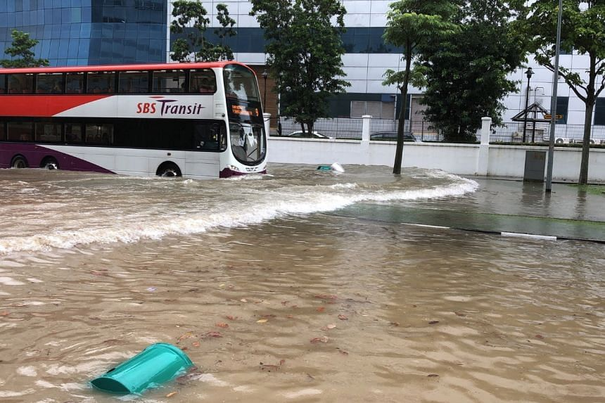 A bus passes through debris on a flooded road on Jan 8.