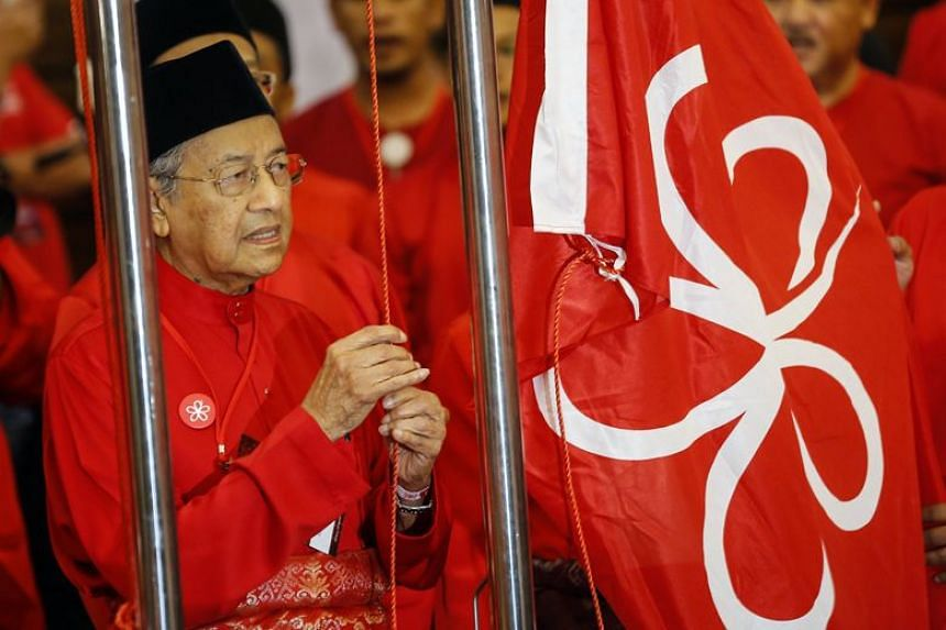 Tun Dr Mahathir Mohamad was named the opposition's candidate for premier on Jan 7.