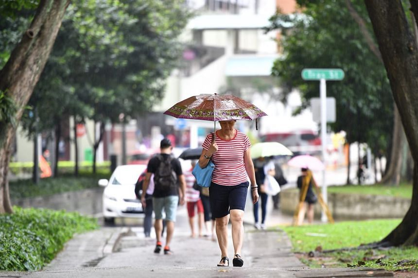 A woman walks in the rain at 3.45pm in Tanjong Pagar on Jan 9, 2018.