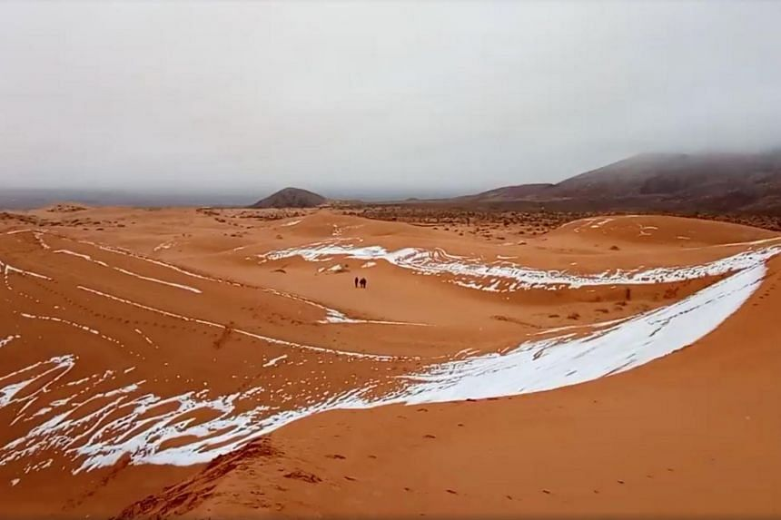 Experts said snowfall in the Sahara was rare - though nobody knows quite how rare, because the desert is so vast and there are comparatively few monitoring facilities.
