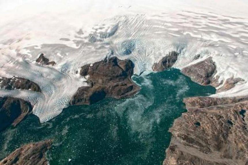 Warming oceans restrict vital energy flows between different species in the marine ecosystem.