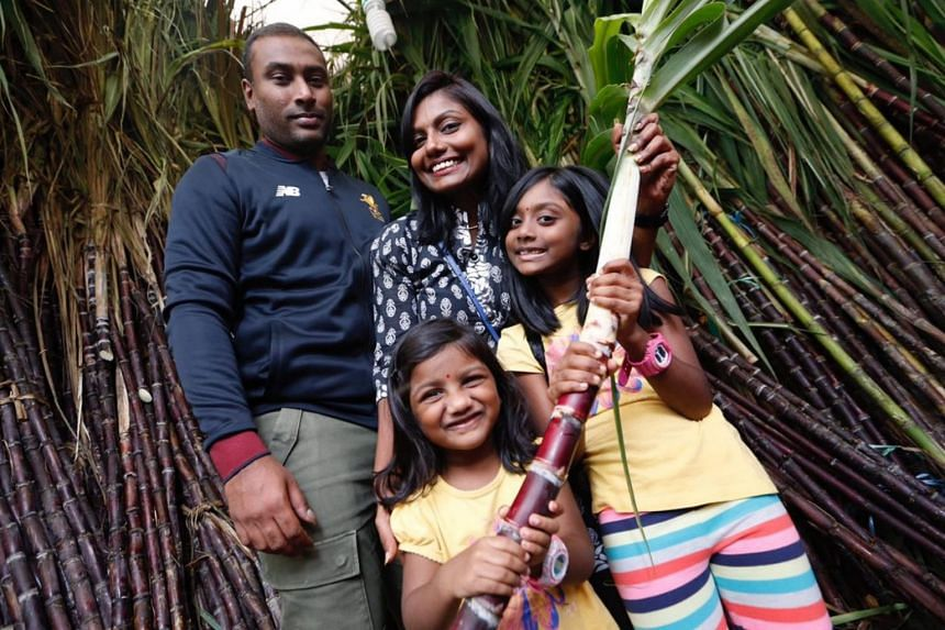 Mr Sivanason Thanendran, his wife Rehka Govindasamy, and their two children Akshaya and Akshana, choosing sugar cane in Little India on Jan 13 as they prepare for the festivities on the first day of Pongal.
