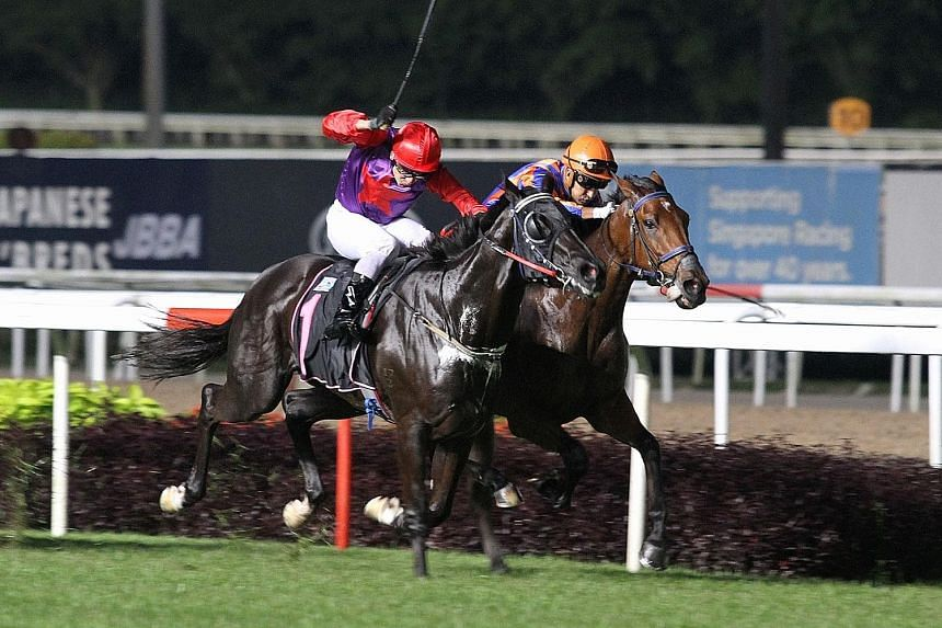 Turf Champion (No. 1) giving extra under Vlad Duric's vigorous riding to beat Destiny Knight in Race 3 and give the champion jockey the second leg of his hat-trick at Kranji last night.