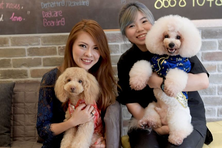 Ms Melody Yap (left) and her dog Pudding, with The Pawlour owner Joyce Toh and her dog Dora.