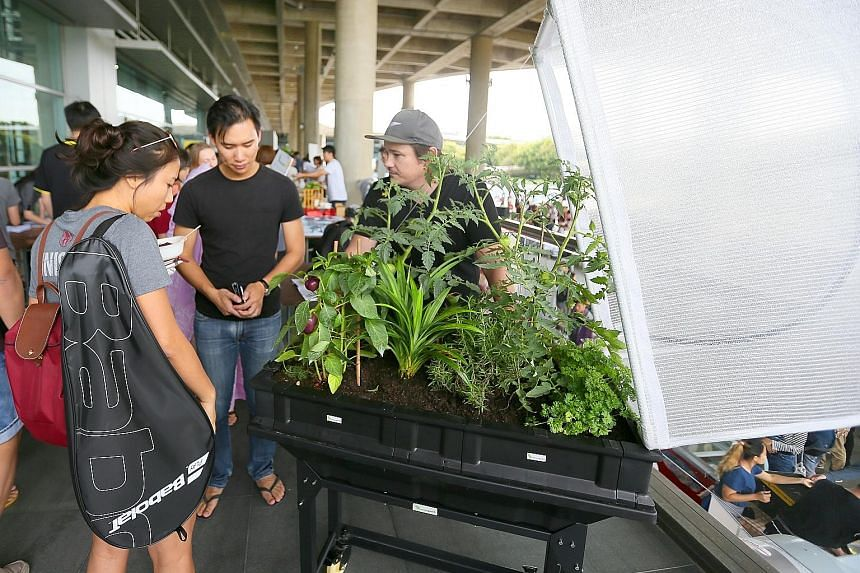 Visitors to booths could buy items such as locally grown organic produce (above) and tableware made from rice husks (far left); or learn about self-contained raised garden beds which are ideal for urban vegetable and herb gardening.