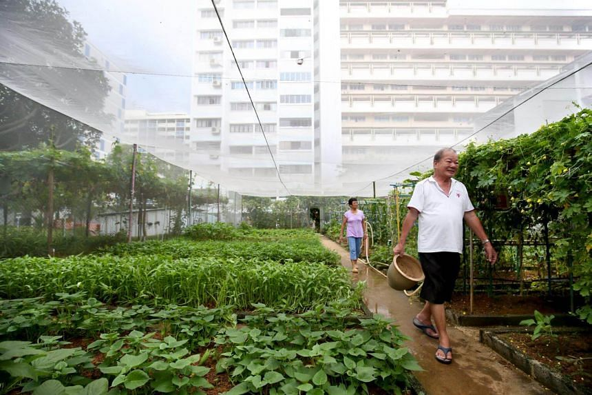 The gardening plots, where residents can grow edible and ornamental plants, can be leased for three years for $57 per year.