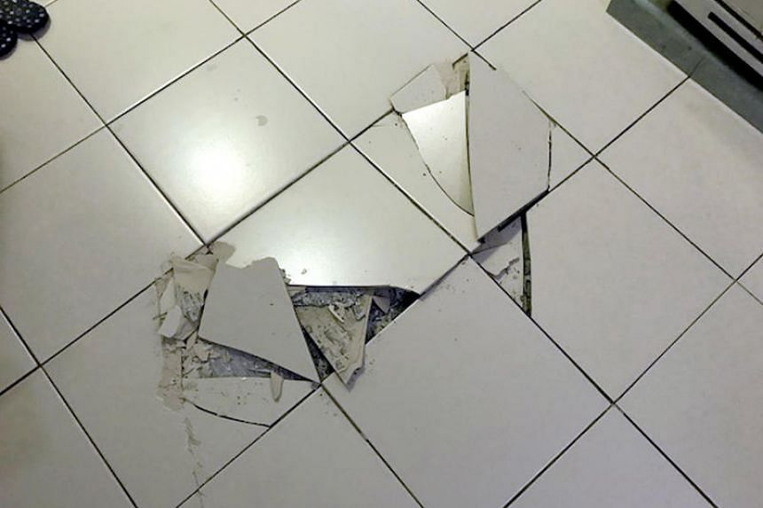HDB helps owners repair dislodged tiles originally provided by the board during the one-year defect liability period and offers goodwill repairs for dislodged tiles for up to 15 years.