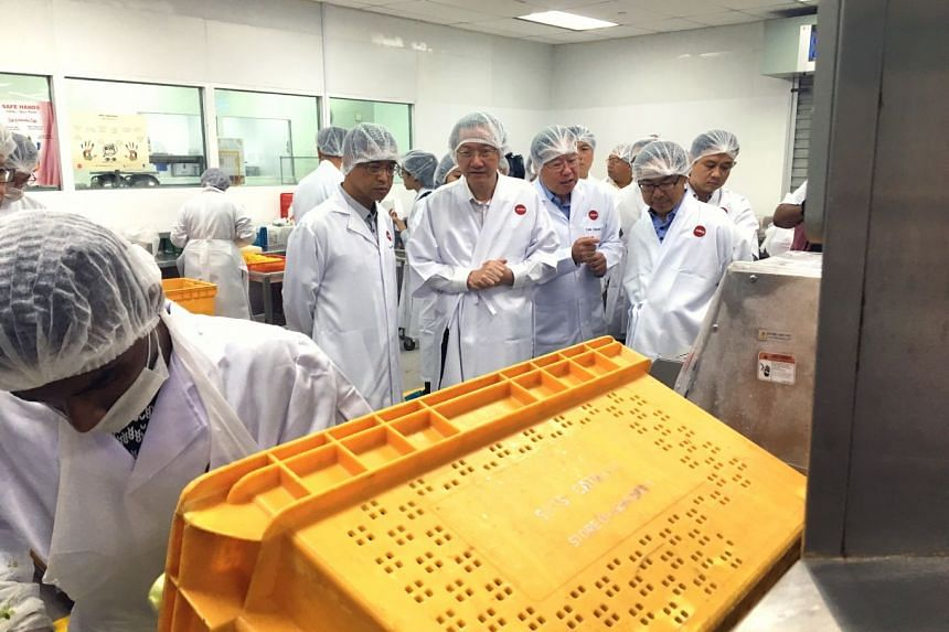 (From left) SATS Inflight Catering Senior vice-president Goh Siang Han, Minister of State for Manpower Sam Tan,  SATS Chairman of Food Solutions Tan Chuan Lye and Singapore National Employers Federation vice-president John Ng on a tour of the SATS