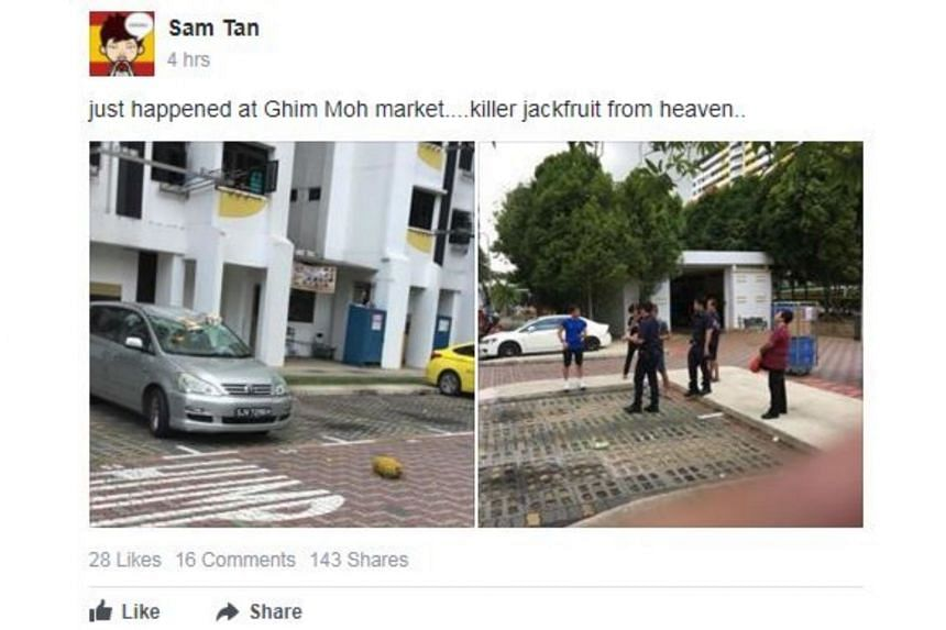 Photos shared on Facebook showed the fruit on the road.
