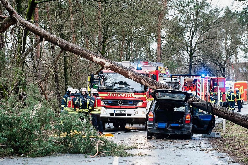 Firefighters and rescue teams standing next to a car on which a tree fell due to heavy storms, on Jan 18, 2018, in Bielefeld, western Germany.