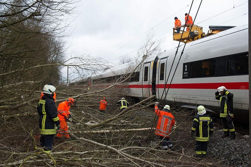 Firefighters removing fallen trees near Lamspringe, northern Germany, on Thursday. The trees had fallen on a high-speed train between Hanover and Goettingen.