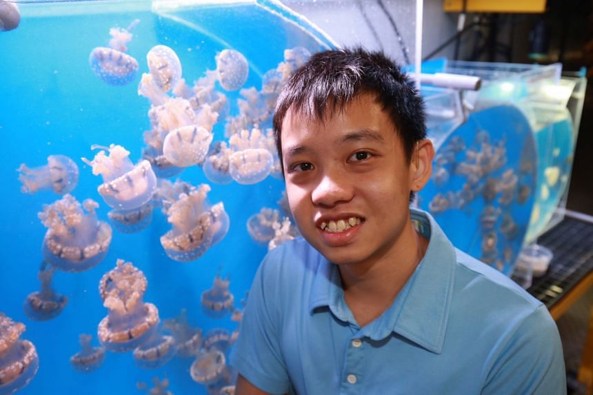 Aquarist Kenneth Chin has been deaf since age two but that did not stop him from pursuing a career in marine life and husbandry at SEA Aquarium.