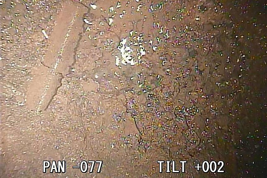 A fresh image released on Jan 19 shows broken metal parts and debris that could be melted fuel inside one of the three melted-down reactors of Fukushima's crippled nuclear power plant.