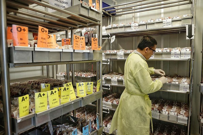 A laboratory staff member organising labelled blood bags kept in storage at the blood processing lab of the Health Sciences Authority.