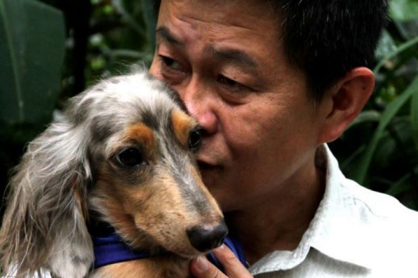 Singaporean Yee Kok Chew claimed his three-and-a-half-year-old dachshund, named Waldi, and him had been chased and attacked by Furby, a chocolate-white male mongrel, many times before the April 2017 incident.
