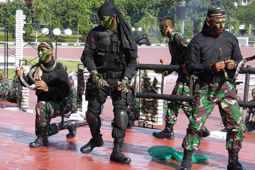 Soldiers from the Indonesian Special Forces putting on a performance for visiting US Defence Secretary James Mattis. During the show, they killed live snakes, including cobras, and served the blood to each other in a sign of brotherhood. The soldiers