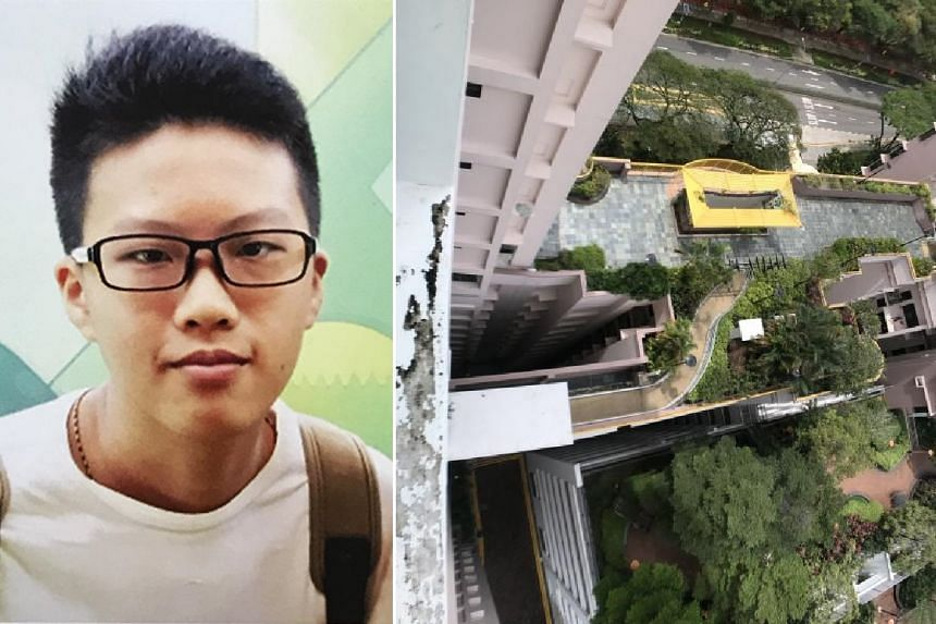 Ng Jun Hui, 16, was pronounced dead at the scene after falling from the 12th floor of Block 79D, Toa Payoh Central, on Jan 23, 2018.