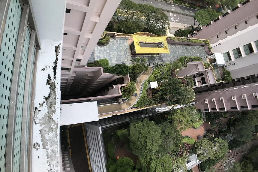 Ng Jun Hui, 16, fell to his death from the sky garden (left) at Block 79D in Toa Payoh Central in the early hours of Tuesday. A former classmate who was with him told the teen's father that his son had mistakenly hopped over a wall at the edge of the