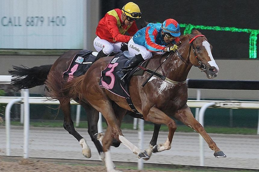Natural Impulse (No. 3) scoring his fifth win from 34 starts in the opening race at Kranji last night. Showing three-figure odds at his five previous starts, he started a hot favourite and paid $10 for a win.
