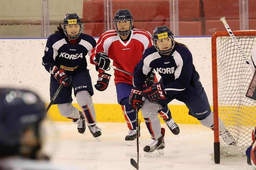 The ice hockey squad is made up of 23 South Korean players and 12 Northerners, who crossed the Demilitarised Zone last week.