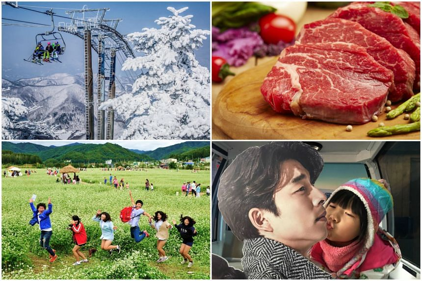 Pyeongchang offers visitors a range of activities, including (clockwise from top left) skiing, enjoying top-grade Korean beef, reliving K-drama at filming sites and viewing buckwheat flower fields.