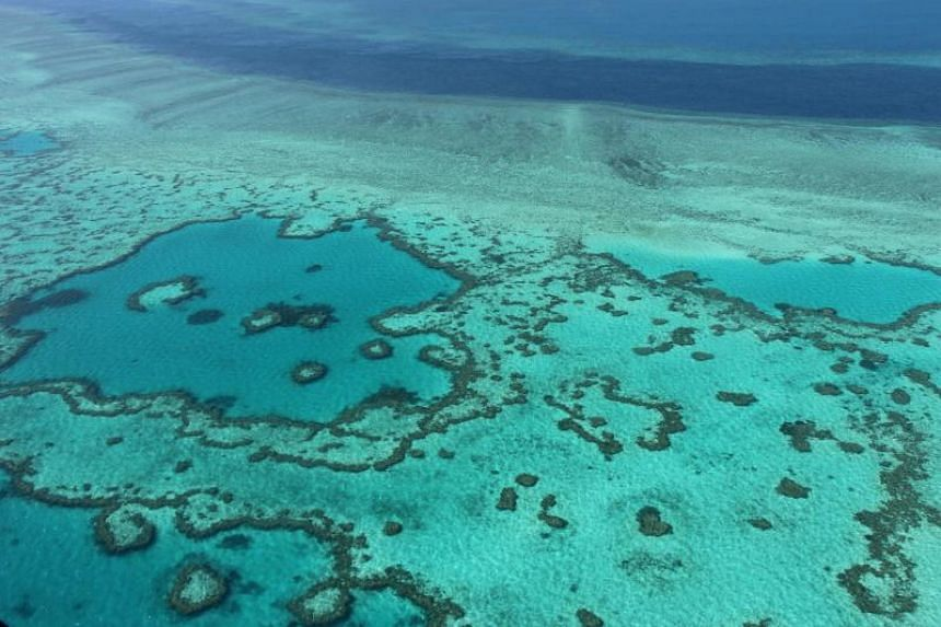 An aerial view of the Great Barrier Reef off the coast of the Whitsunday Islands, along the central coast of Queensland, on Nov 20, 2014.