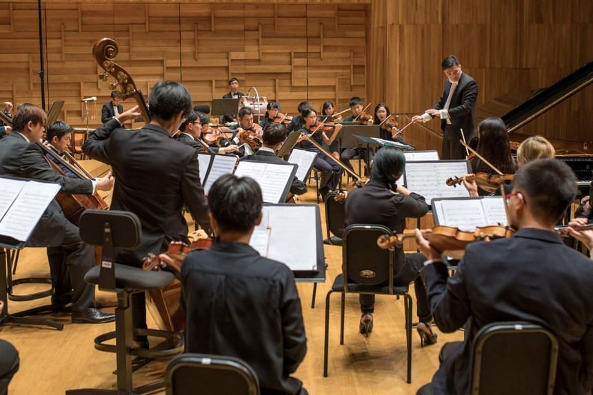 The Addo Chamber Orchestra performing contrasting piano concertos by Mozart and Prokofiev in a file photo taken on Aug 16, 2015.