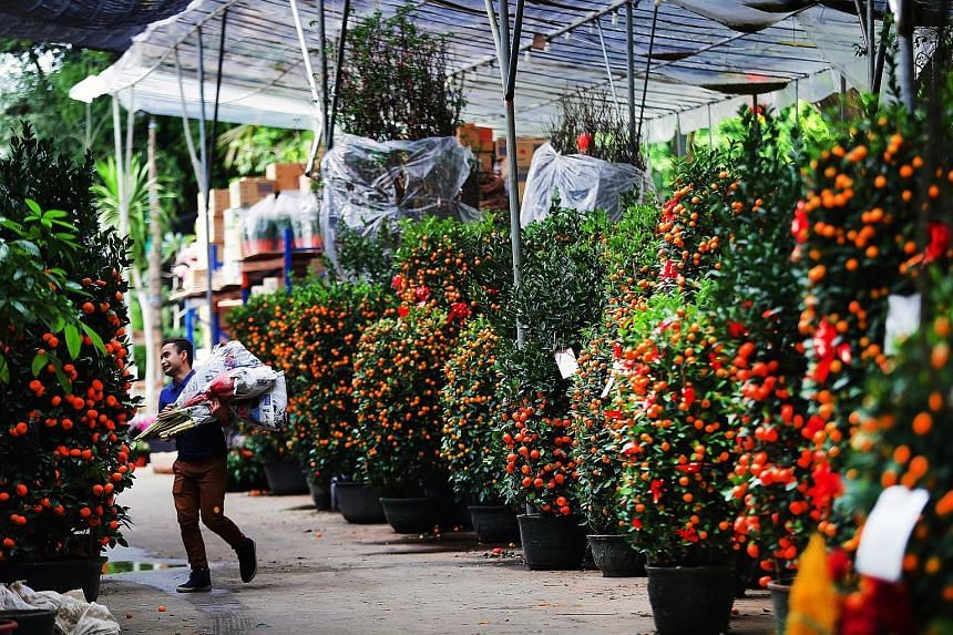 Wholesale trader Candy Floriculture is also tapping technology to expand its business, by setting up a business-to-business platform.