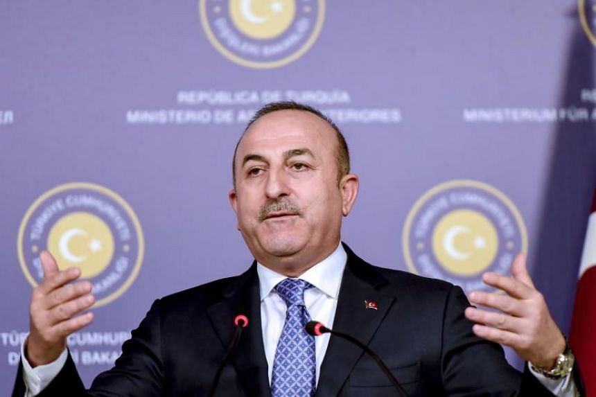 Turkish Foreign Minister Mevlut Cavusoglu at a press conference in Istanbul with his Austrian counterpart on Jan 25, 2018.